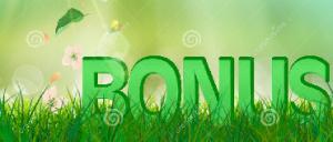 summer bonus