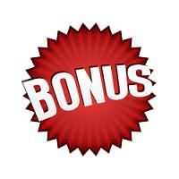 Online casino with a lot of bonus